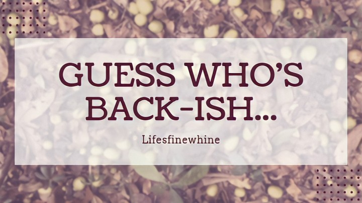 Guess Who's Back-ish (Blog Update)