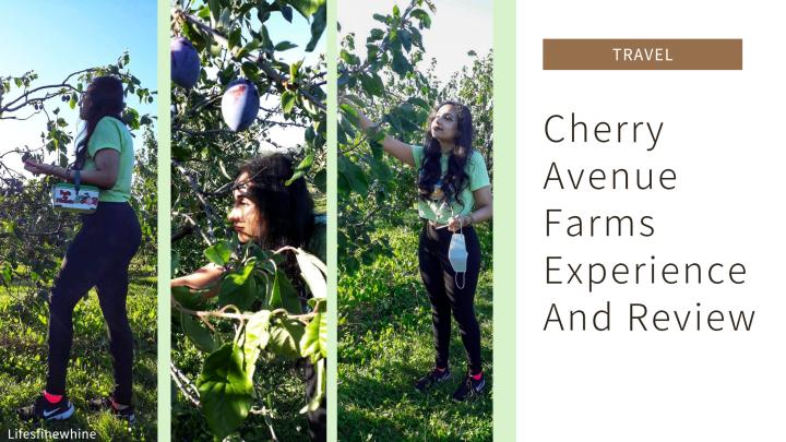 Cherry Avenue FarmsExperience