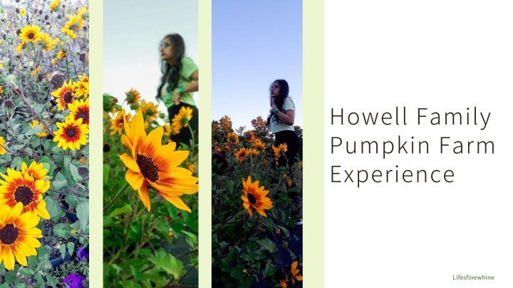 Howell Family Pumpkin Farm- Sunflower FieldExperience